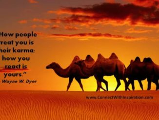 wayne-dyer-quote-how-people-treat-you-is-their-karma-your-reaction-pq-025-2012-r