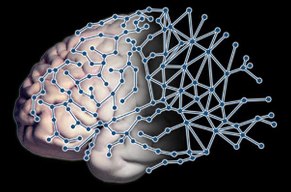 Νέα τεχνική χαρτογράφησης του εγκεφάλου επισημαίνει τη συσχέτιση μεταξύ συνδεσιμότητας και δείκτη νοημοσύνης